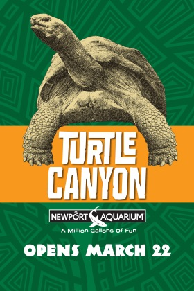 NAQ_TurtleCanyon-Poster2014