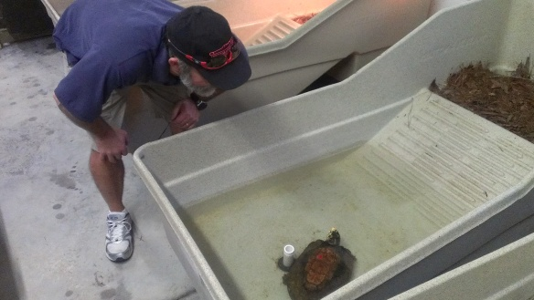 Ric with turtle at TSA