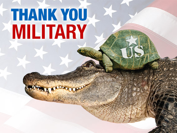 Military_MightyMike_TurtleHelmet