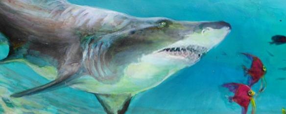 SharkSection