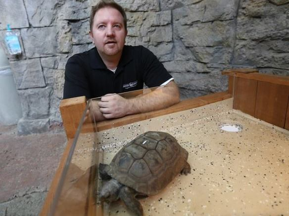 Jeff Gibula has worked at Newport Aquarium since before it opened in 1999.
