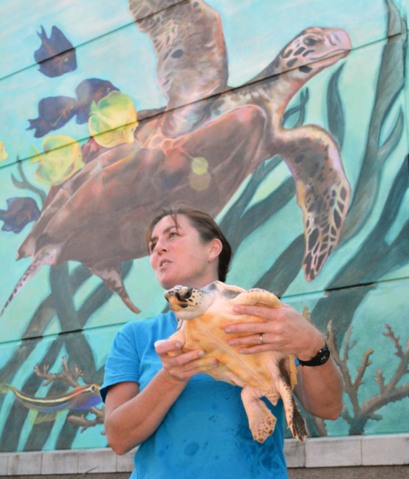Biologist Jen Hazeres with Tilly the turtle.