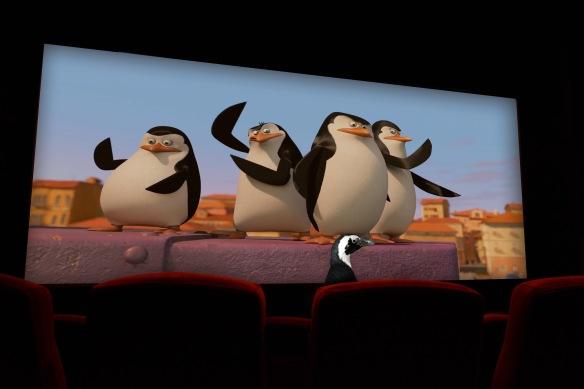 Newport Aquarium's Paula the penguin got a sneak peak of the new Penguins of Madagascar film at AMC Theatres at Newport on the Levee.
