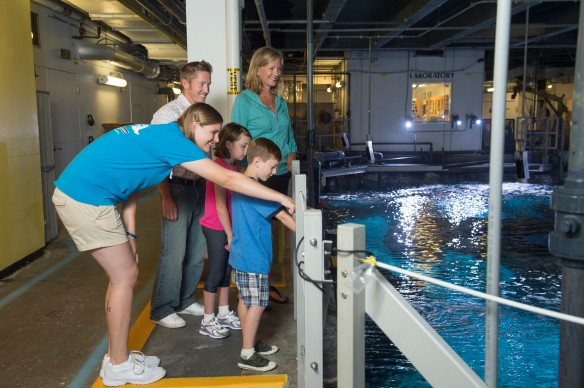 The Backstage Animal Experience at Newport Aquarium offers guest a behind-the-scenes look of the aquarium.