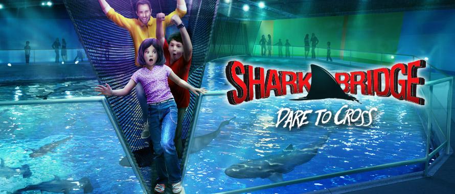 Kids Get Free Admission To Newport Aquarium During Summer