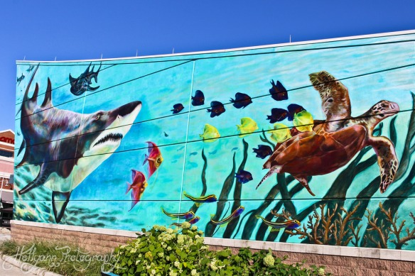 The Shark Wall outside the Newport Aquarium. (Source: flickr user hollyannh)