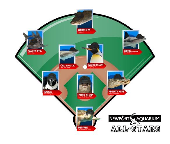 NAqAll-Stars_BaseballDiamond