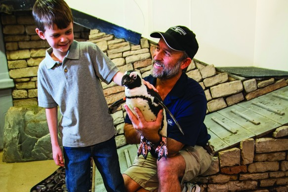 Newport Aquarium Animal Ambassador Ric Urban (right) has more than 30 years of experience as a zoo keeper. (Photo by Tim Webb/Kentucky Living)