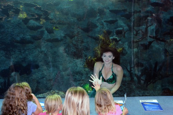 Mermaid Taylor interacts with children while swimming in Newport Aquarium's Coral Reef tunnel.