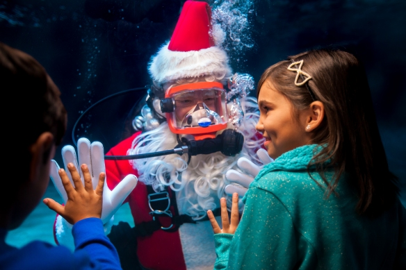 At Newport Aquarium's Water Wonderland with Scuba Santa, kids will have the opportunity to talk with Santa while he's underwater!
