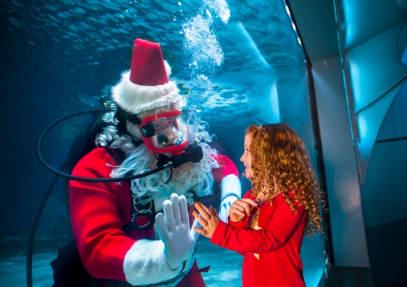 Kids can tell Scuba Santa what they'd like from Christmas