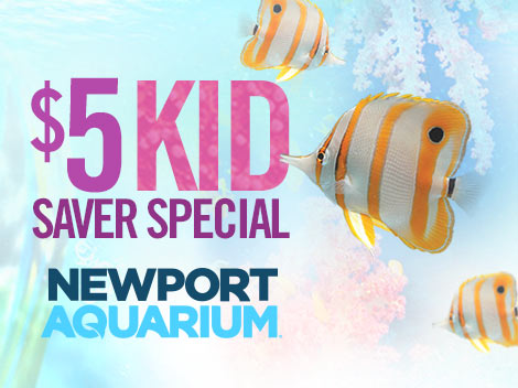 newport aquarium special offer