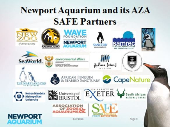 Newport Aquarium and AZA SAFE Partners