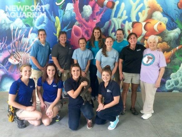 We joined teams from Mystic Aquarium, Adventure Aquarium (our sister aquarium), Virginia Aquarium, National Aquarium in Baltimore, and NC Aquarium at Pine Knoll Shores.