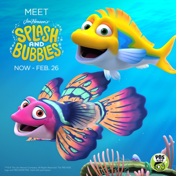 meet-splash-bubbles