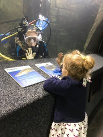 nicks-daughter-and-diver