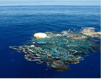 North Pacific Gyre Garbage Patch