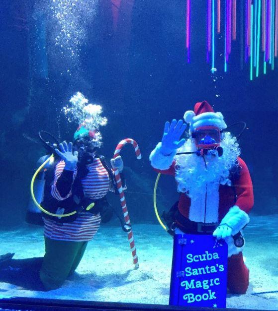 LC with Scuba Santa