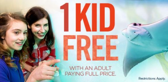 1 Kid FREE