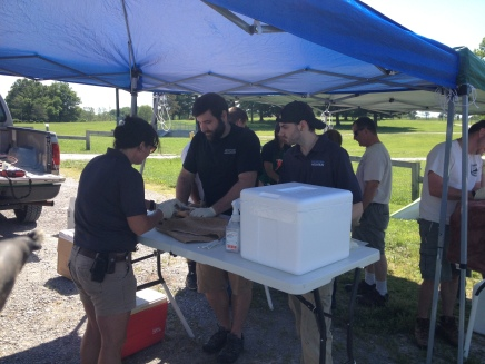 Biologists KY Fish and Wildlife