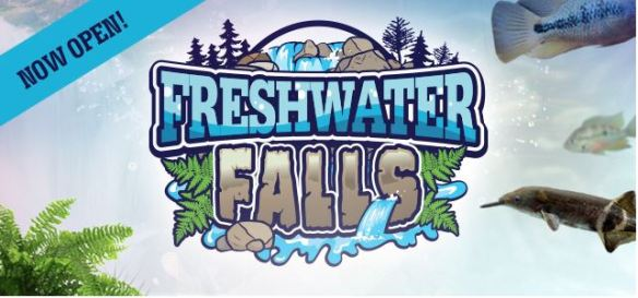 Freshwater Falls Now Open