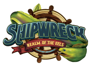 ShipwreckRealmOfTheEels_Logo_FINAL